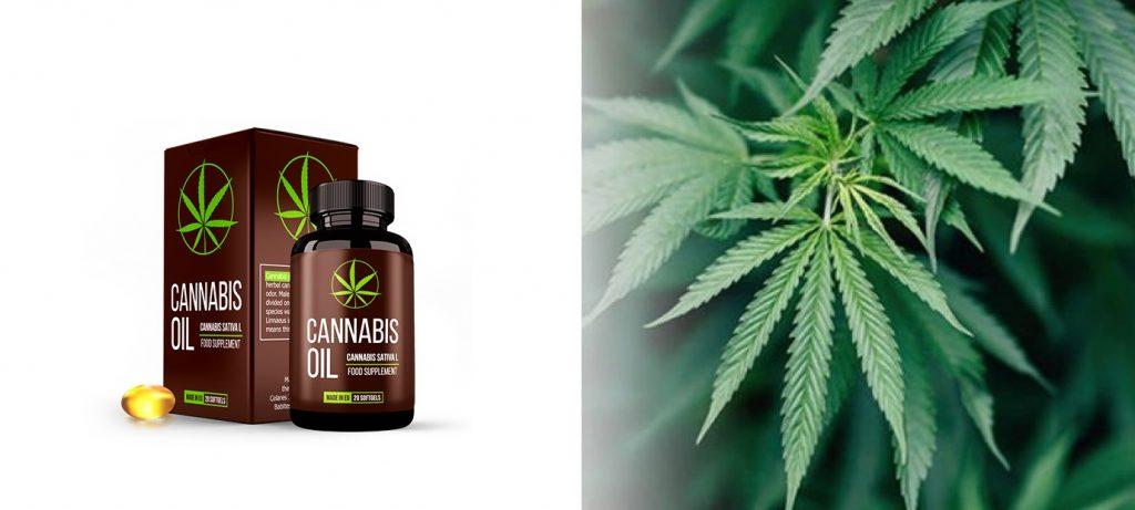 Combien coûte Cannabis oil? Comment commander sur le site du Fabricant?